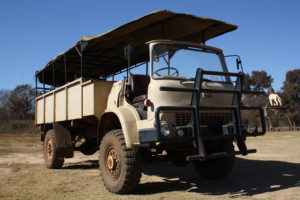 game drive bedford