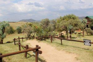 wondercave-restaurant-rhino-lion-nature-reserve-003