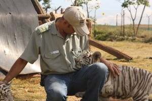 23-animal-creche-rhino-lion-nature-reserve