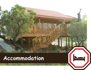 accommodation-rhino-lion-button