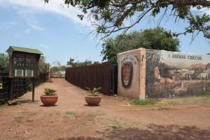 30-animal-creche-rhino-lion-nature-reserve