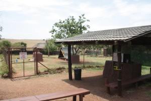 33-animal-creche-rhino-lion-nature-reserve