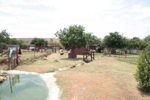 34-animal-creche-rhino-lion-nature-reserve
